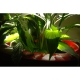 Donica Manacor S 45x48 Kama Flower