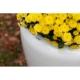 Donica Tracino L 75x70 Kama Flower