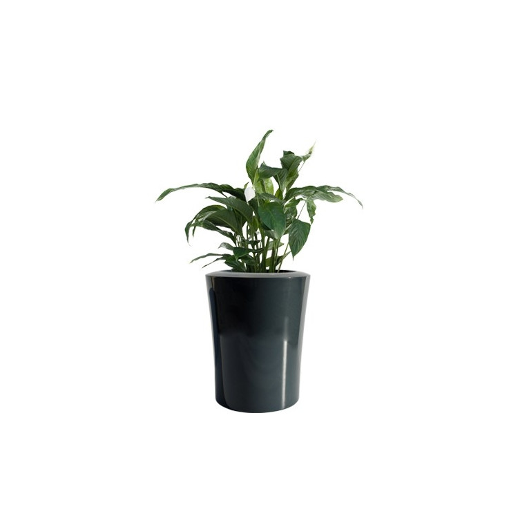 Donica Garafia L 75x60 Kama Flower