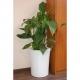 Donica Garafia XL 100x80 Kama Flower