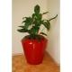 Donica Canico M 60x60 Kama Flower