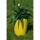 Donica Anakena XXL 125x100 Kama Flower